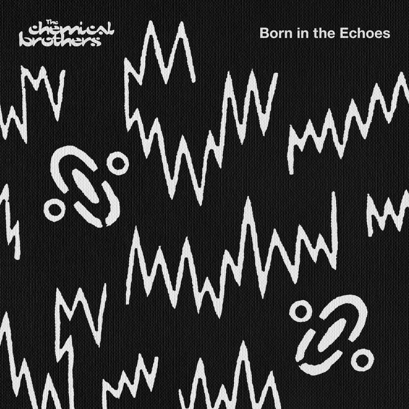 Born In the Echoes [VINYL]